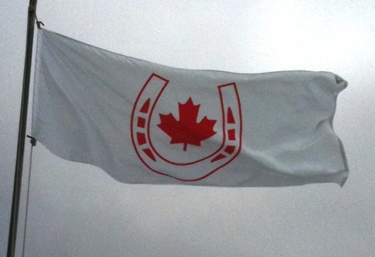 Canadian Equestrian Team flag