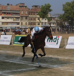 A Successful Strike in the Tent Pegging Lance Discipline