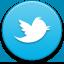 My Twitter Tweets